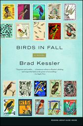 Birds in Fall by Brad Kessler