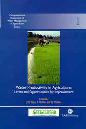 Water Productivity in Agriculture by J.W. Kijne