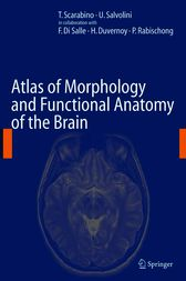 Atlas of Morphology and Functional Anatomy of the Brain by T. Scarabino