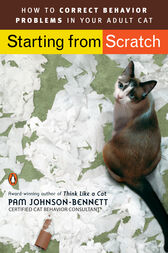 Starting from Scratch by Pam Johnson-Bennett
