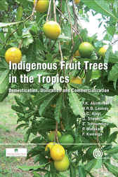 Indigenous Fruit Trees in the Tropics by F. K. Akinnifesi