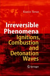 Irreversible Phenomena in Ignitions, Combustion and Detonation Waves