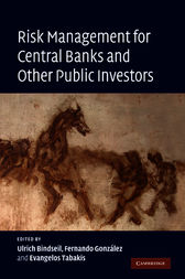 Risk Management for Central Banks and Other Public Investors