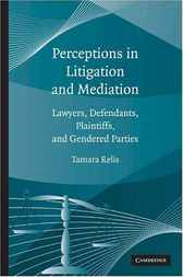 Perceptions in Litigation and Mediation by Tamara Relis