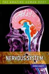 The Amazing Human Body: Nervous System by George Capaccio