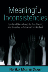 Meaningful Inconsistencies by Neriko Musha Doerr