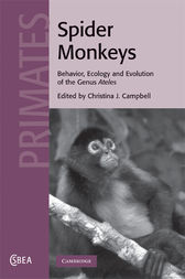 Spider Monkeys by Christina J. Campbell