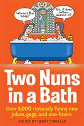 Two Nuns In A Bath