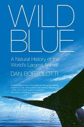 Wild Blue by Dan Bortolotti