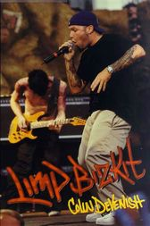 An analysis of the book limp bizkit by colin devenish