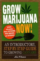 Grow Marijuana Now! by Alicia Williamson