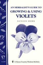 An Herbalist's Guide to Growing & Using Violets by Kathleen Brown