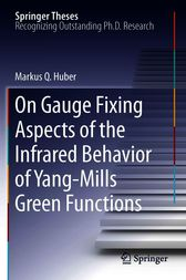 On Gauge Fixing Aspects of the Infrared Behavior of Yang-Mills Green Functions by Markus Q. Huber