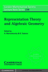 Representation Theory and Algebraic Geometry by A. Martsinkovsky