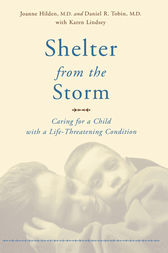 Shelter From The Storm by Joanne Hilden