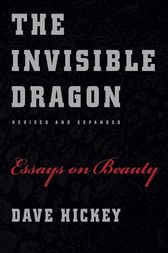 invisible dragon essays beauty The invisible dragon four essays on beauty published by art issues press/foundation for advanced critical studies text by dave hickey an intellectual tour-de-force .