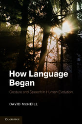 How Language Began by David McNeill