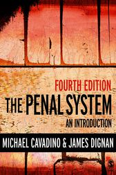 The Penal System by Mick Cavadino