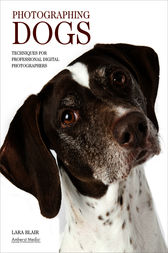 Photographing Dogs by Lara Blair