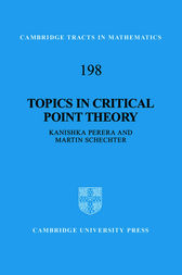 Topics in Critical Point Theory