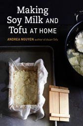 Making Soy Milk and Tofu at Home by Andrea Nguyen