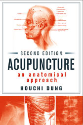 Acupuncture by Houchi Dung