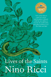 An analysis of the story lives of the saints by nino ricci