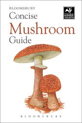 Concise Mushroom Guide by Bloomsbury