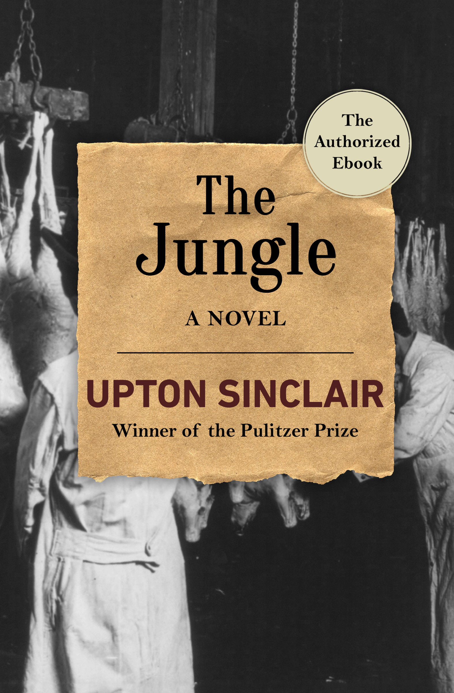 a literary analysis of the story of the jungle video The jungle book (1967) the story of the jungle book concerns a young man-cub named mowgli amazon video watch movies & tv online.