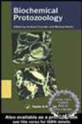 Biochemical Protozoology As A Basis For Drug Design by Graham H. Coombs