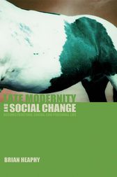 Late Modernity and Social Change by Brian Heaphy