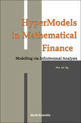 Hypermodels In Mathematical Finance by Siu-Ah Ng