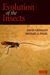 Evolution of the Insects by David Grimaldi