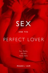 Sex and the Perfect Lover by Mabel Iam