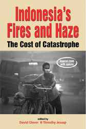 Indonesia's Fires and Haze by David Glover
