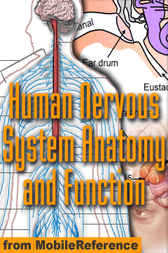 Human Nervous System Anatomy and Function Study Guide by MobileReference