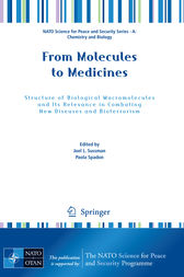 From Molecules to Medicines by Joel L. Sussman