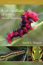 Caterpillars of Eastern North America by David L. Wagner