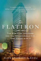 The Flatiron by Alice Sparberg Alexiou