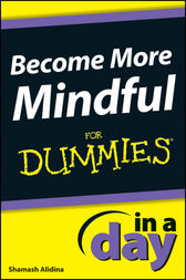 Become More Mindful In A Day For Dummies by Shamash Alidina