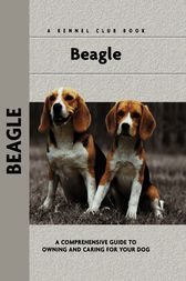 Beagle by Evelyn Elizabeth Lanyon