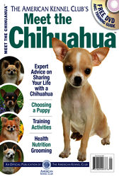 Meet the Chihuahua by American Kennel Club