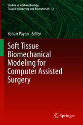 Soft Tissue Biomechanical Modeling for Computer Assisted Surgery by Yohan Payan