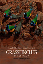 Grassfinches in Australia by Mark Shephard OAM