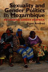 Sexuality and Gender Politics in Mozambique by Signe Arnfred