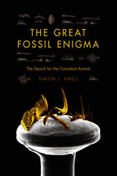 The Great Fossil Enigma by Simon J. Knell
