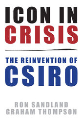 Icon in Crisis by Ron Sandland