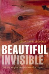 The Beautiful Invisible by Giovanni Vignale