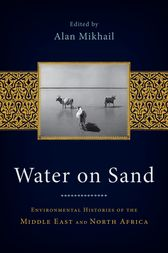Water on Sand by Alan Mikhail