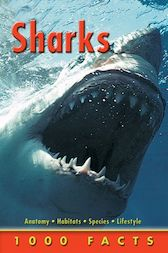 1000 Facts Sharks by Miles Kelly